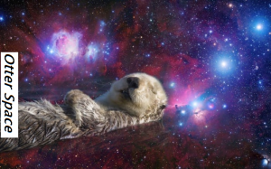 Otter Space (lol)